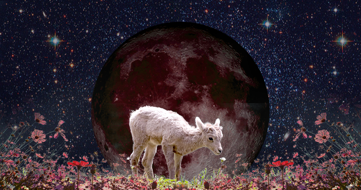 An Aries New Moon of Mystical Thought and Deep Intuition