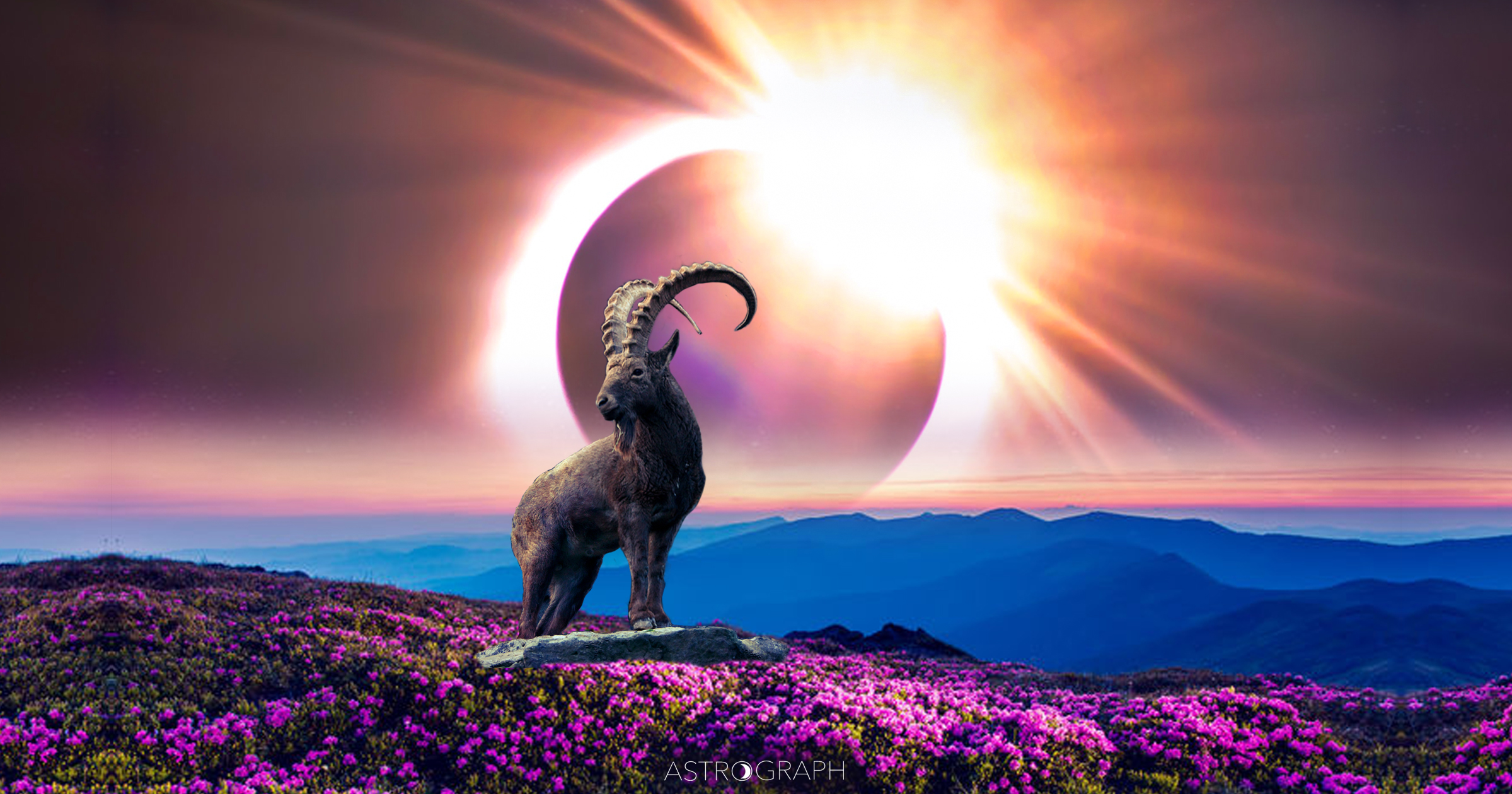 A New Moon Eclipse of Continued Transformational Intention