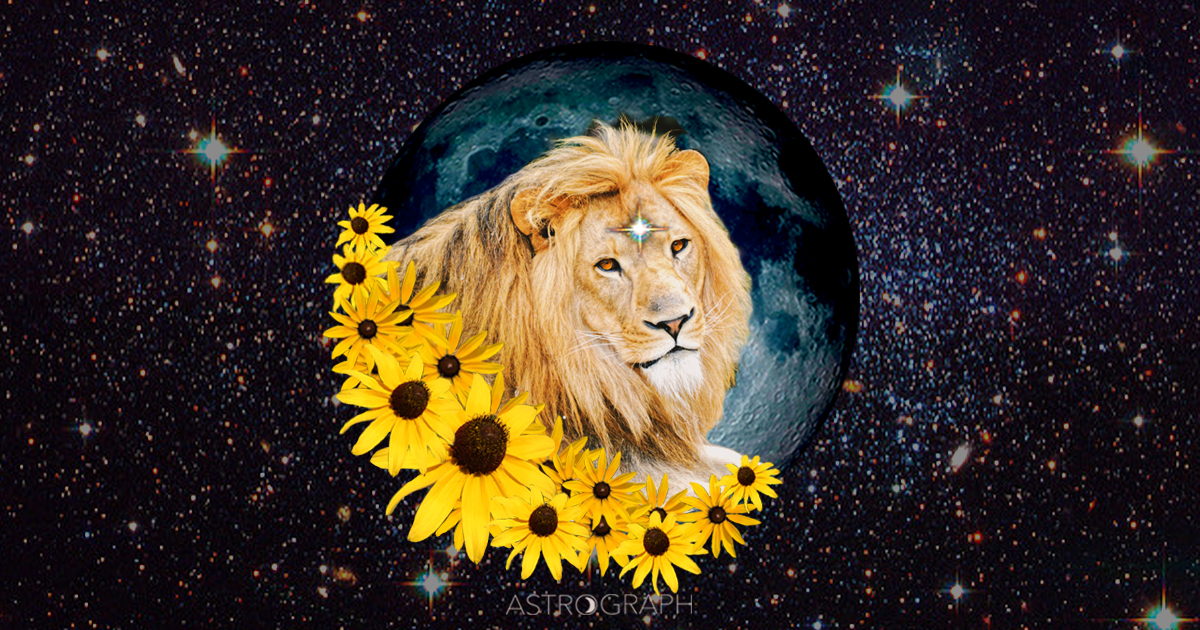 A Leo New Moon of Surprises, and Surprising Enlightenment