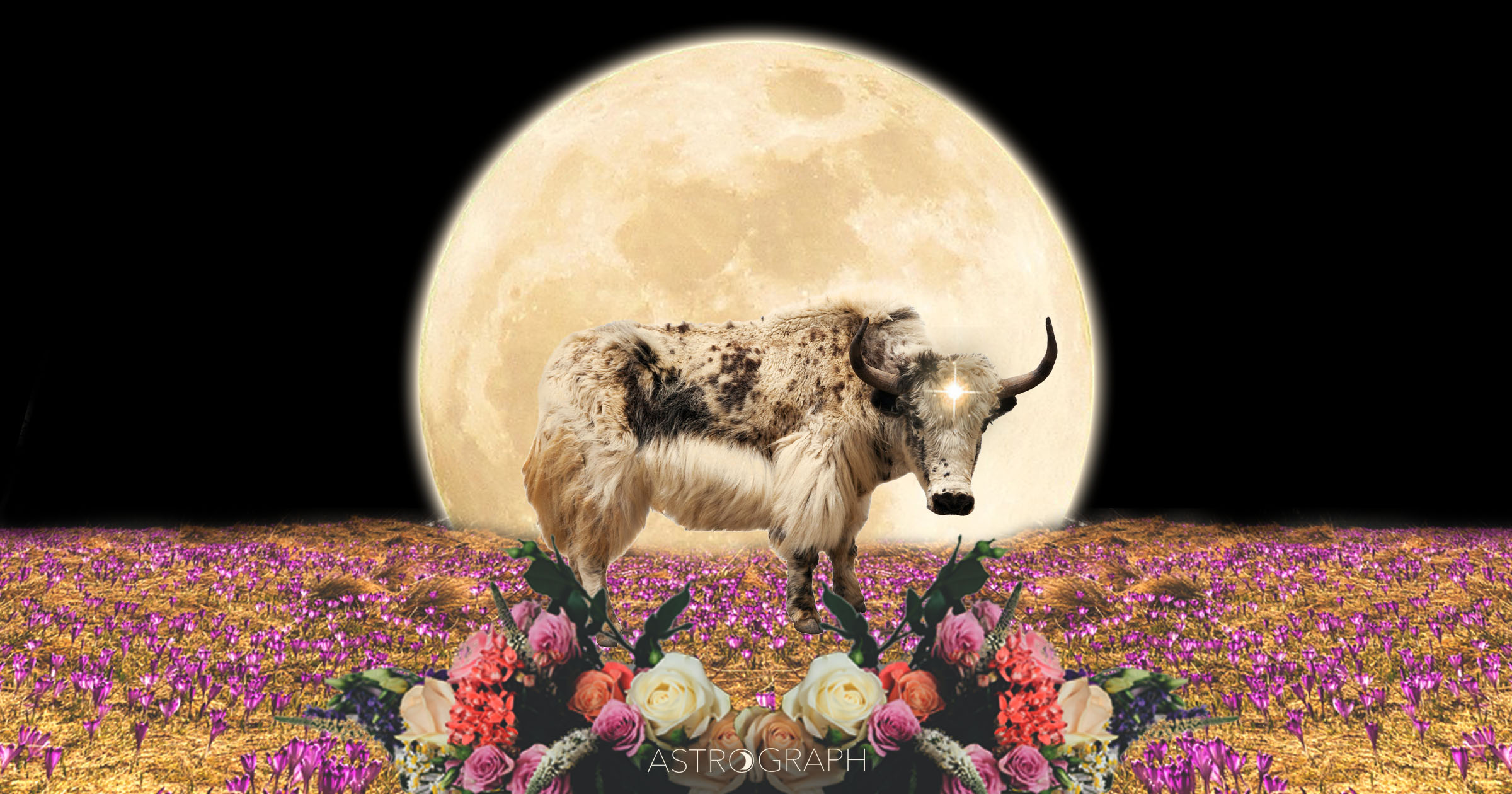 A Full Moon of Reconciling the Polarities