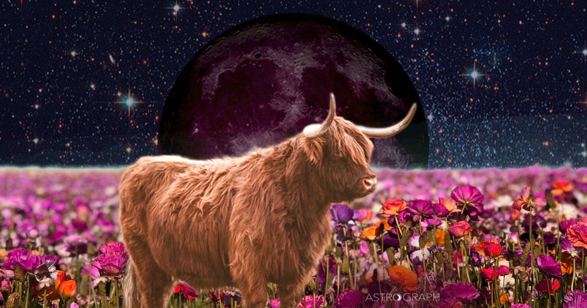 A New Moon of Confusion, Transformational Change, and Hope for the Future